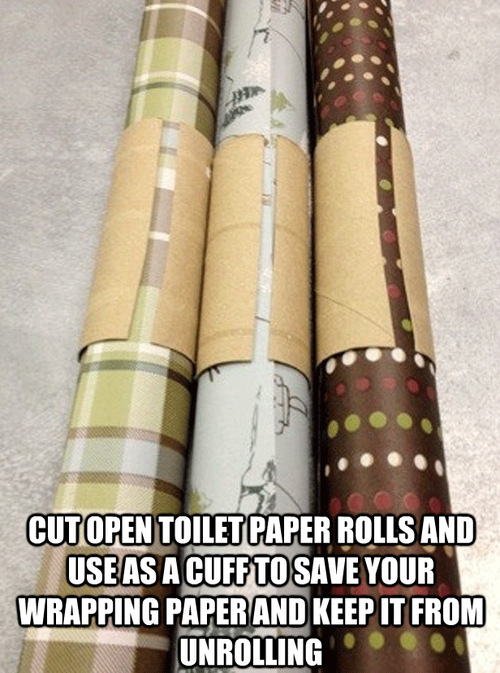 toilet paper rolls lifehack
