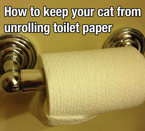 unrolling toiletpaper trick